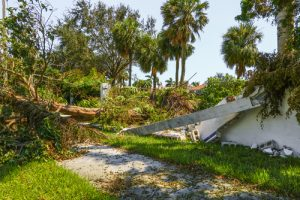 hurricane damage